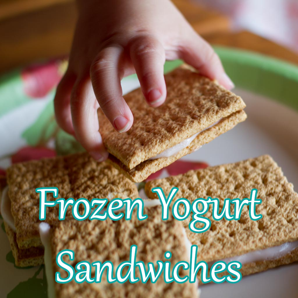 Frozen Yogurt Sandwiches - Dreams and Caffeine