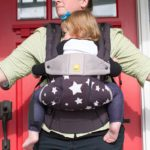 LilleBaby Carrier Complete Rear