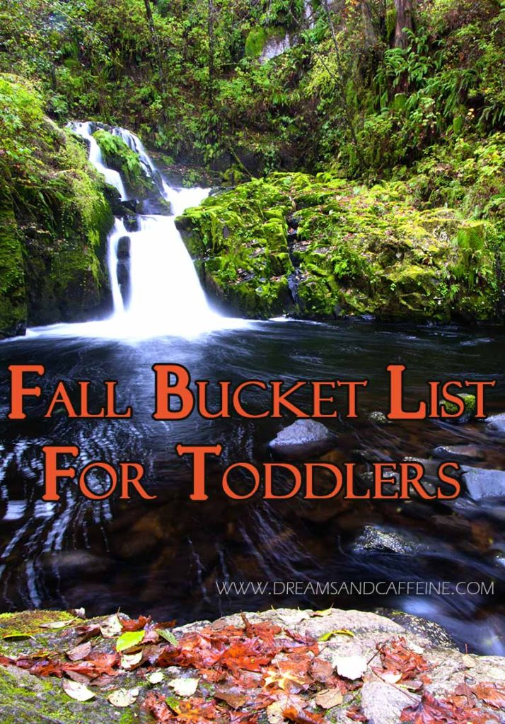 Fall Bucket List for Toddlers - Dreams and Caffeine