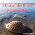 A Day at the Beach Sensory Bin