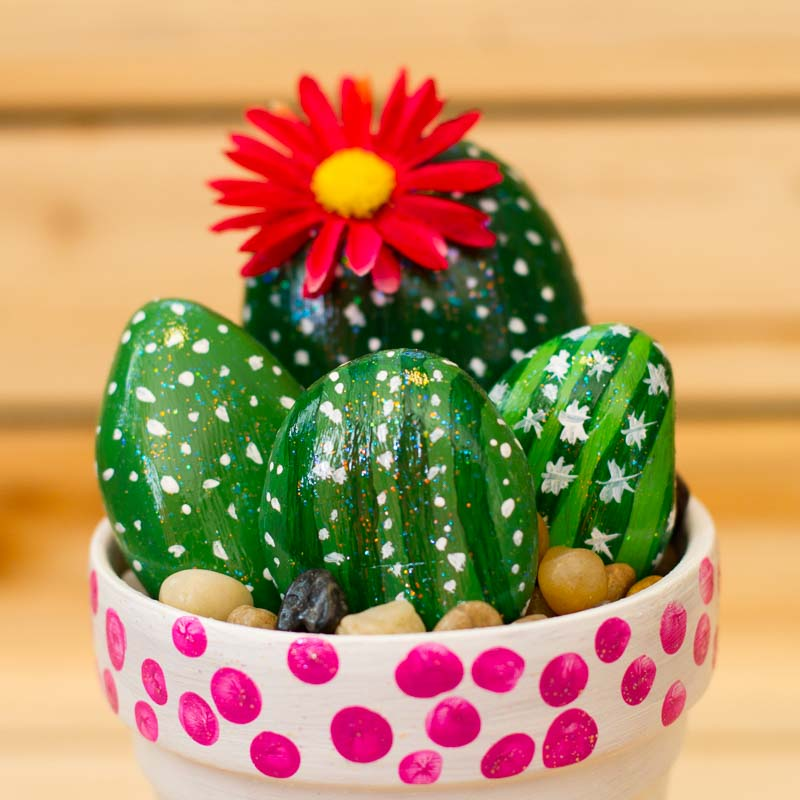 Cactus Rock Garden Tutorial